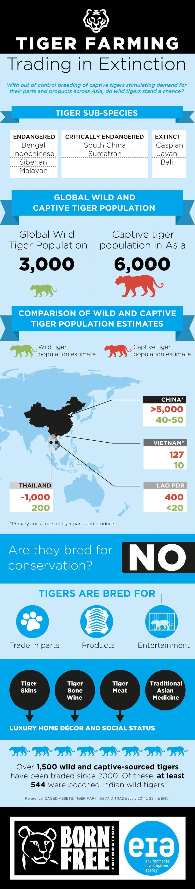 Tiger Farming: Trading in Extinction