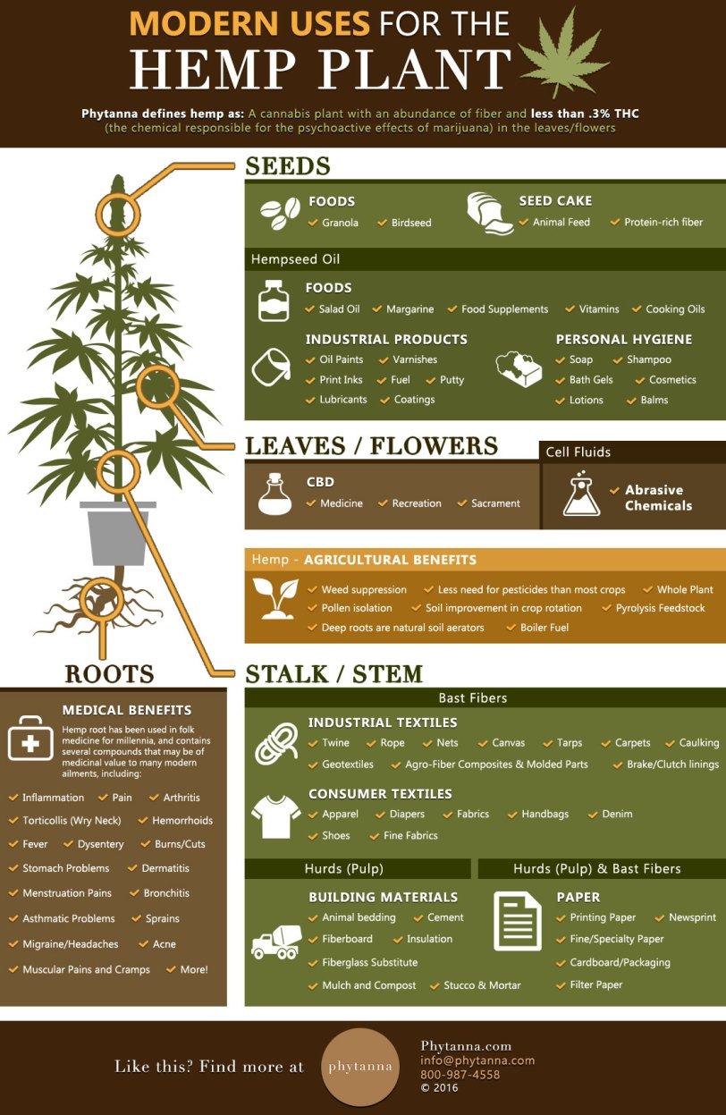 Modern Uses for the Hemp Plant by Phytanna
