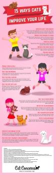 cat-infographic