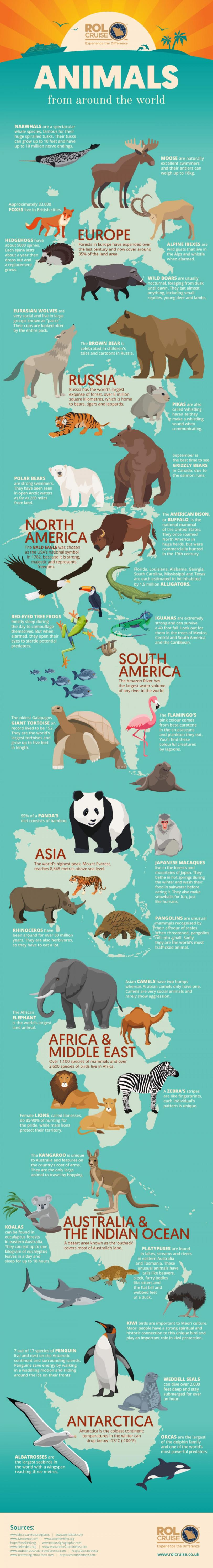Animals From Around the World by ROL Cruise